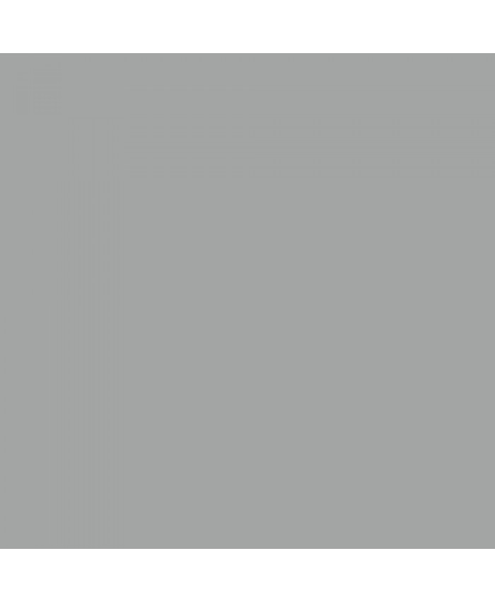 NiceFoto Grey Seamless background paper