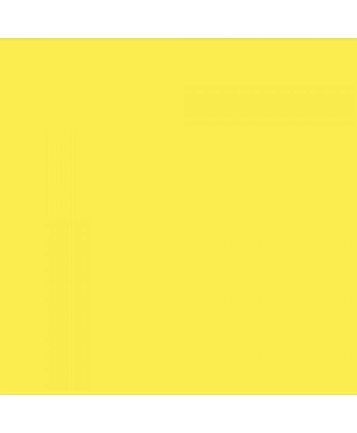 Savage Widetone Seamless Background Paper #38 Canary 2.7m